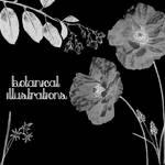 Botanical Illustrations 1