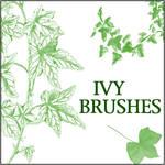 Ivy Brushes 2