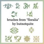 Florialia brushes