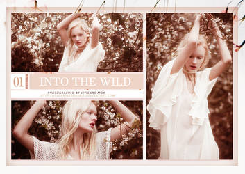 Into The Wild (Photopack) by itsdamnedbarbie