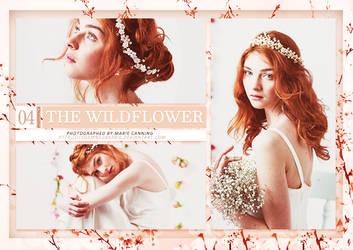 The Wildflower (Photopack) by itsdamnedbarbie