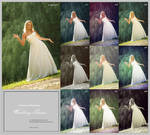 Wedding Theme Action by ver00nika