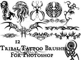 Set Of Brushes . VII by Nexaa21
