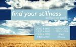 Find Your Stillness WP Pack