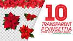 10 Transparent Poinsettia