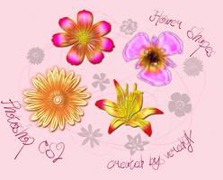 Flower custom shapes for CS2 by veredgf