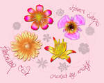 Flower custom shapes for CS2