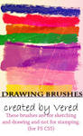 Drawing Brsuhes CS5