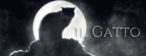 Il Gatto [Wattpad Gif Banner]