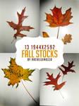 .:Autumn's fire burn: Stock Pack:.