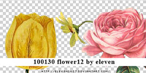 100130_flower12_by_eleven