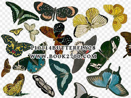 110114_butterfly28_by_eleven