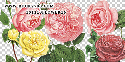101113_flower16_by_eleven by eleven1627