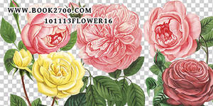 101113_flower16_by_eleven