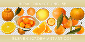 110930_orange15_by_eleven by eleven1627