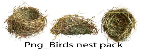 Png_ Birds Nest Pack by Susannehs
