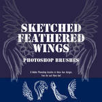 Sketched Feather Wing Brushes