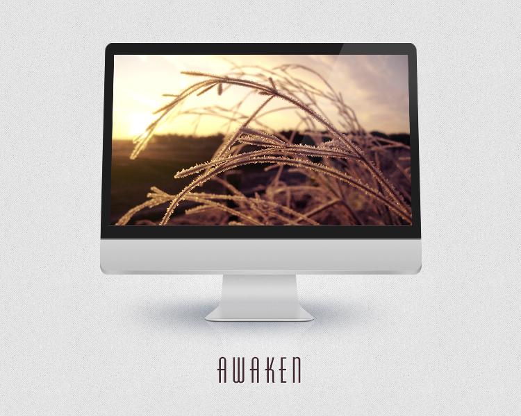 Awaken by PointVision