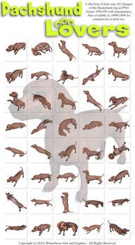 Dachshund Lovers Images PNG-350