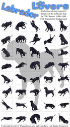 Labrador Lovers Images PNG-350 by Winterbrose-AandG