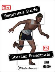 The Beginner's Guide to Starter Essentials for Daz by Winterbrose-AandG