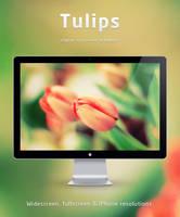 Tulips wallpaper by emey87