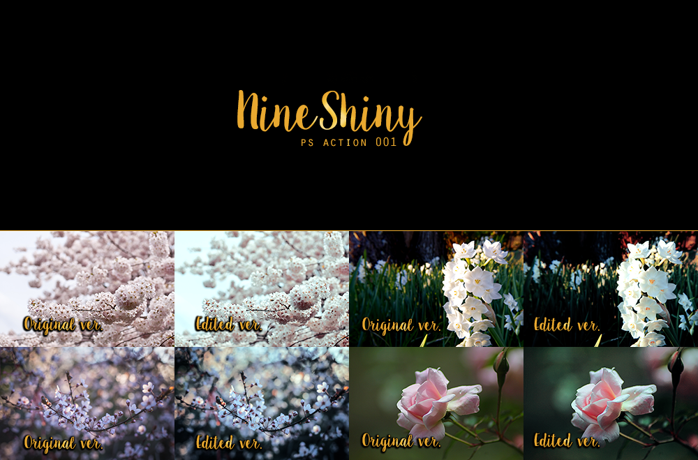 Photoshop Action 001: Cherry Blossoms by NineShiny