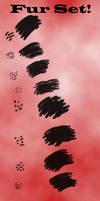 Fur Set by Tazni