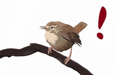 Wrenbird by OracleofImladris