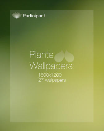 Plante Wallpapers by participant