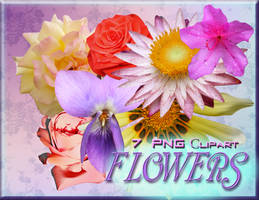 Clipart Flowers 7 PNG by Mumuza