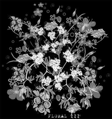 floral III by fotoristic
