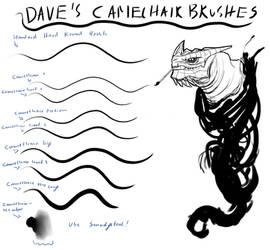 Dave's Camelhair Brush Set