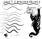 Dave's Camelhair Brush Set