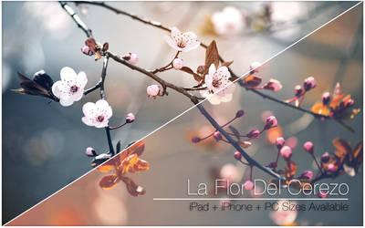 La Flor Del Cerezo by Allucard9