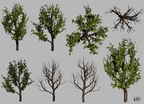 Free Small Bush - 3D .Obj + .Png Transparent Image