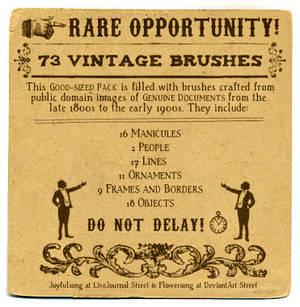 Brushes 19: Vintage Ornaments