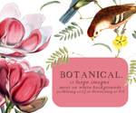 Textures 021: Botanical