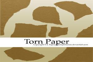 Torn Paper by Tempestazure
