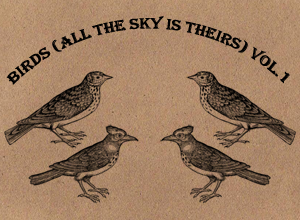 Birds _all the sky is theirs_ by motion-suggests