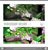 Photoshop Action 3 by huejuice
