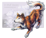 9 Wolf Bases