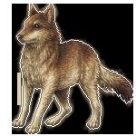 Wolf pixel base