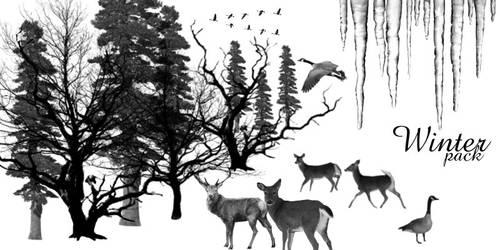 Winter Pack by supaslimstock