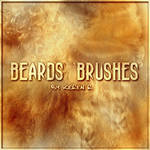 Beards brushes
