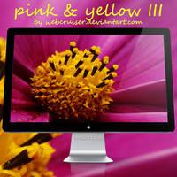 pink and yellow III