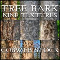 Wood:  Bark Texture Pack by Cobweb-stock