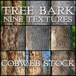 Wood:  Bark Texture Pack