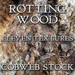 Wood:  Rotten Texture Pack