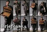 Briefcase - Pack 1